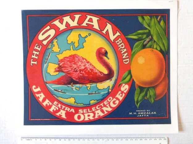 כרזת פרסום: The Swan Brand מוצמדת לבד Extra selected Jaffa Oranges