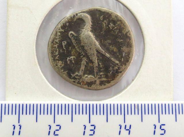 מטבע כסף טטרה דרכמה, שלטון סלווקוס השלישי, אנטיוכיה מסופוטמיה, פנים: דיוקן המלך גב: הנשר האימפריאלי