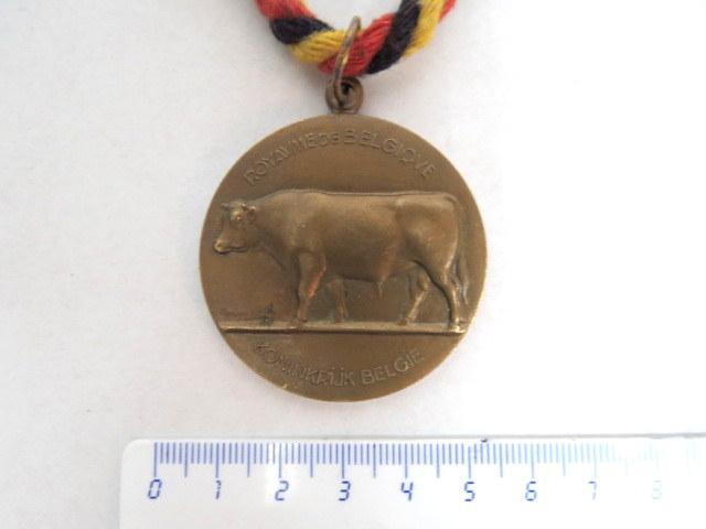 מדלית ברונזה, תחרות גידול בקר, 1952