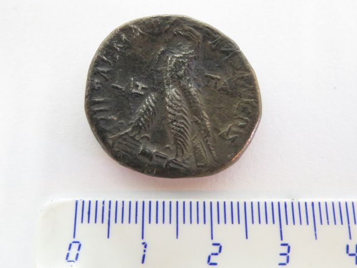 """מטבע טטרדרכמה, כסף, מטבעת פפוס, קפריסין, תלמיי ה-II, שנים 285-246 לפנה""""ס"""