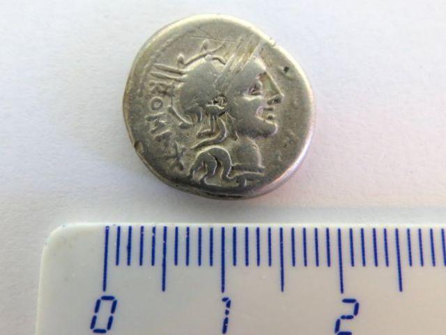 """מטבע דינר כסף, הרפובליקה הרומית מטביע: Sergia-I, שנת 116-5 לפנה""""ס, צד א: לוחם על סוס עם ראש של גאלי ביד, מצב VF"""