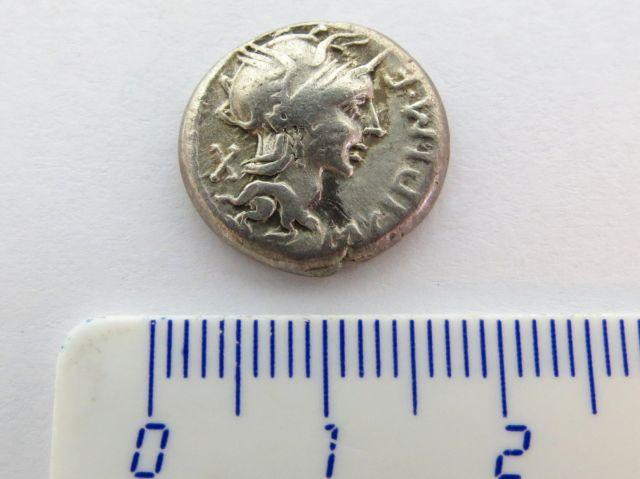 """מטבע כסף רומי ע""""ס דינר רפובליקני, 115-114 לפנה""""ס, Cipia"""