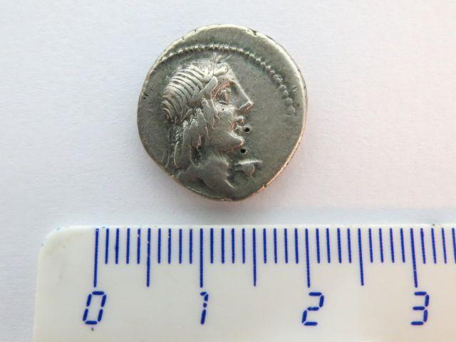 """מטבע כסף ע""""ס דינר, רפובליקני 90 לפנה""""ס, Calpurnia"""