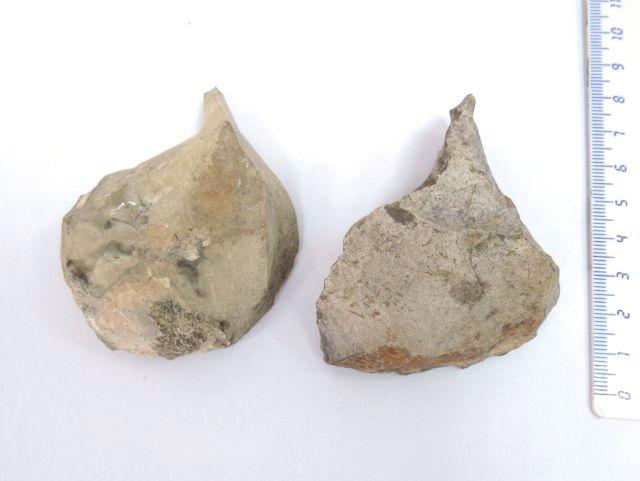 """זוג נקרים Buzin, תקופה פלאוליתית עליונה, 40000-20000 לפנה""""ס"""