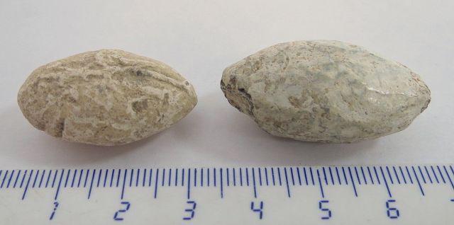 """שתי אבני קלע מעופרת, תקופה הלניסטית, מאה שלישית עד ראשונה לפנה""""ס"""