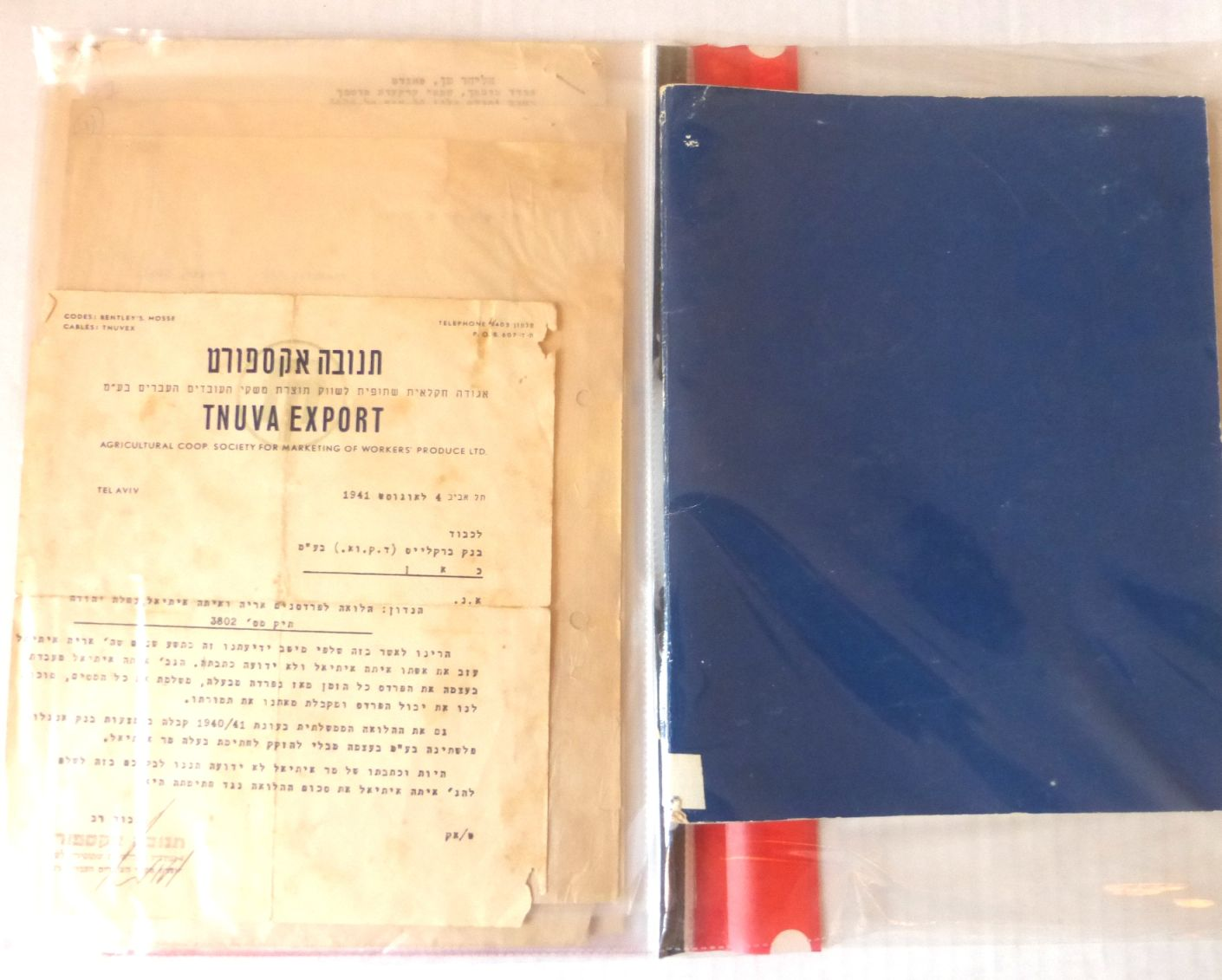 """לוט 25 מסמכים ותעודות בעניין תנובה, החל מ-1941 עד 2005, וכן דין וחשבון מרכז תנובה משנת תשל""""ג"""