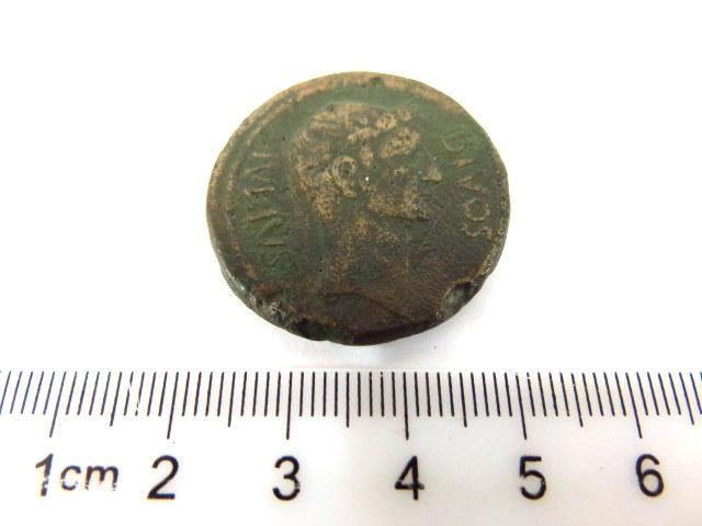מטבע ברונזה רומי' דיוקנאות של שני קיסרים לאחר מותם, המאה הראשונה לספירה